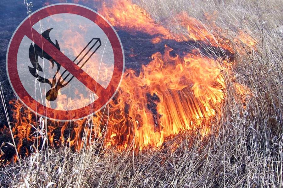 Предупредить и не допустить пожары