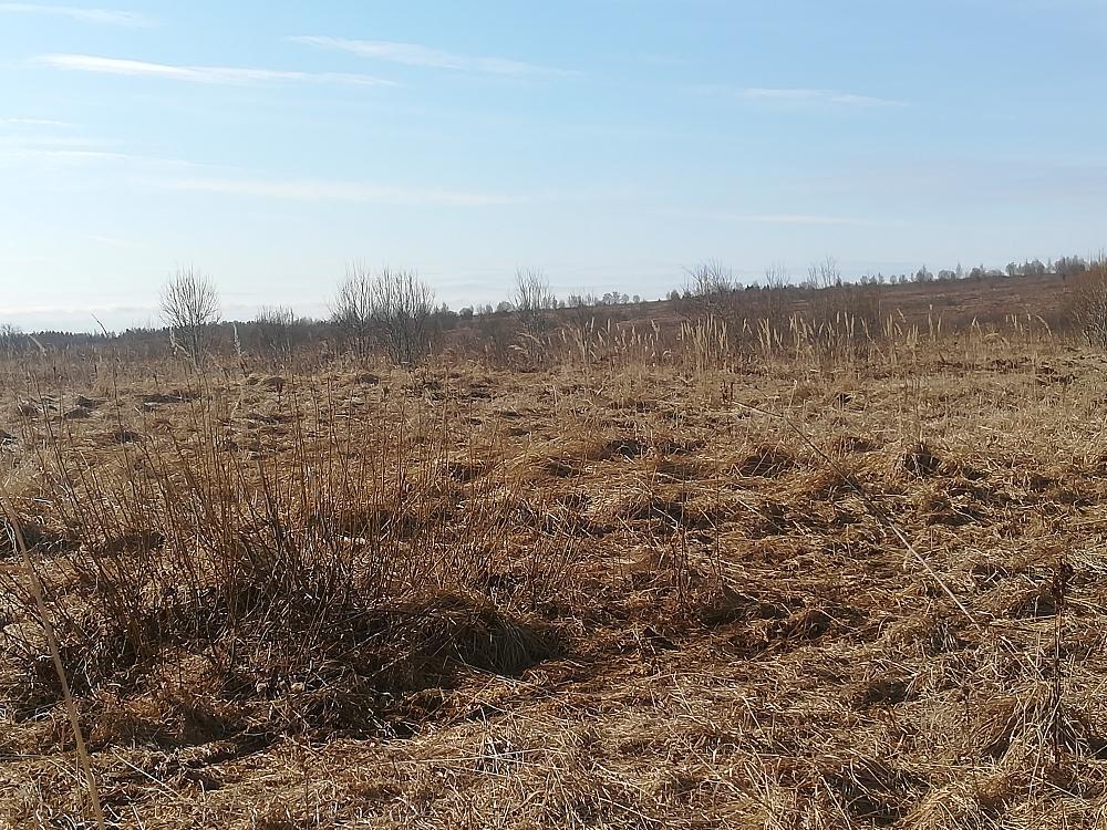 О зарастании земельного участка сельскохозяйственного назначения сорной растительностью на территории Ростовской области