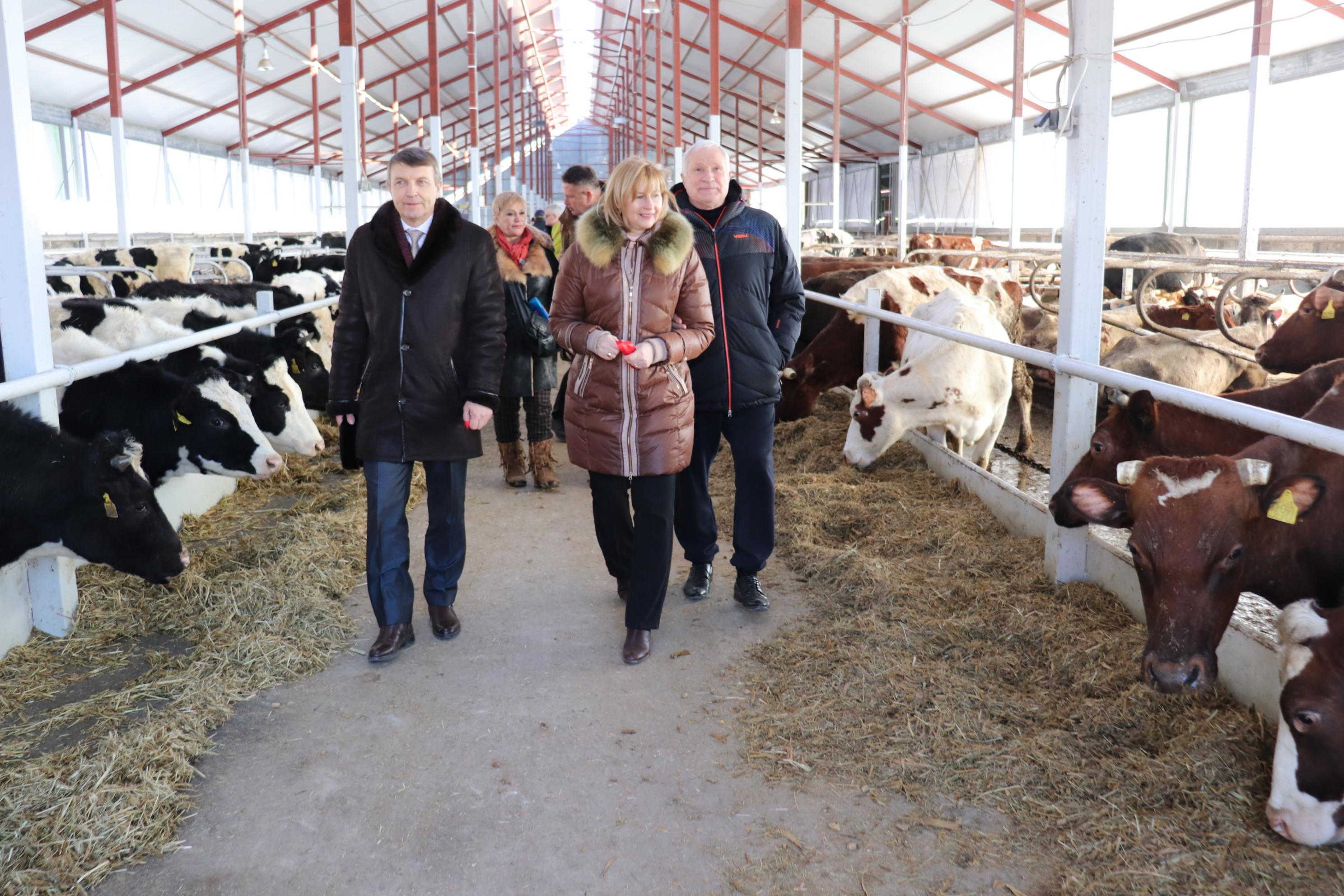 Ростовская экономика: развитие ради благосостояния