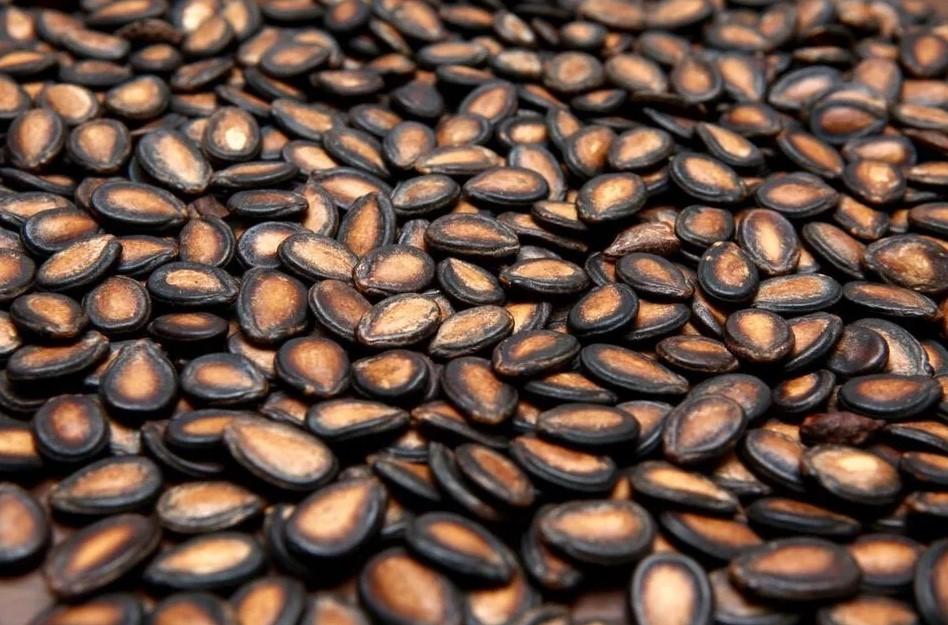 В Ростовской области Управлением Россельхознадзора выявлено нарушение правил маркировки ввозимых семян овощных культур