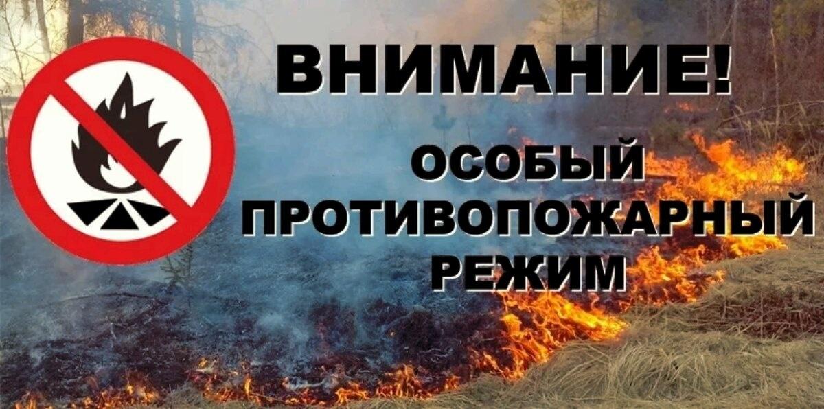 В районе введён особый противопожарный режим