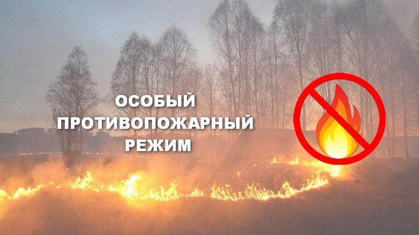 На территории Ростовской области установлен особый противопожарный режим