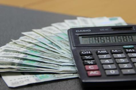 Банковскими организациями Ростовской области реструктуризировано более 2,2 тысячи действующих кредитов субъектов МСП