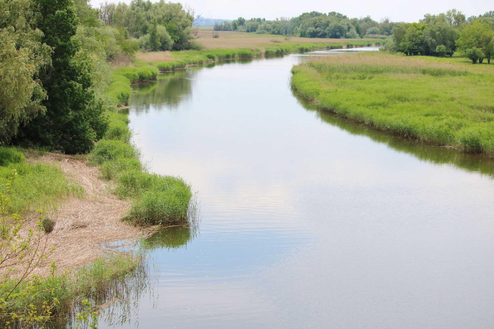 На участке «Дельта Дона» появится новый экологический маршрут