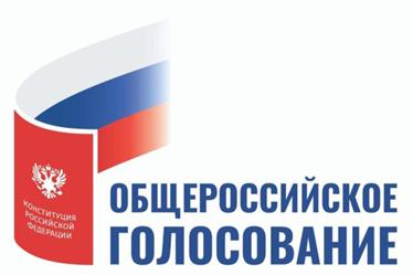На Дону начался период активного наблюдения за ходом общероссийского голосования