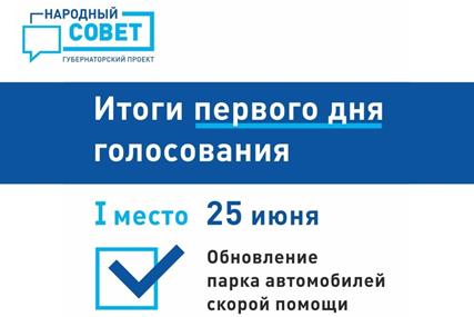 Первые итоги голосования в рамках губернаторского проекта «Народный совет»
