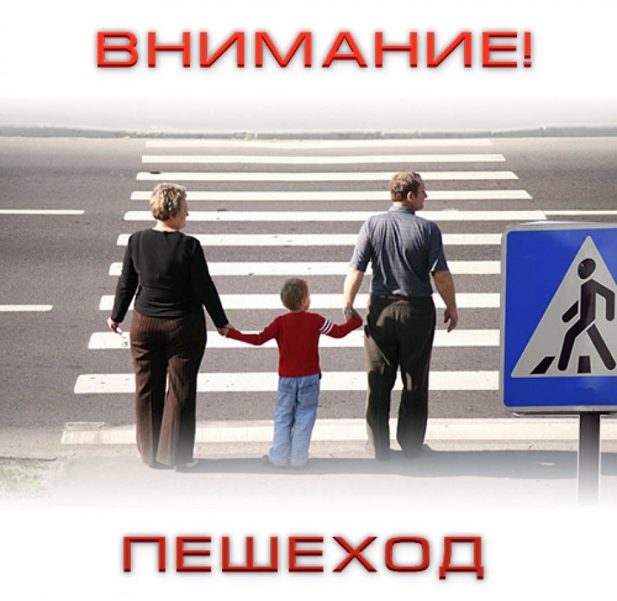 Профилактическое мероприятие «Внимание пешеход!»