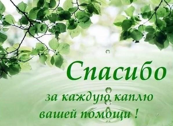 Примите Благодарность за участие в организации похорон Молчанова Вячеслава Александровича