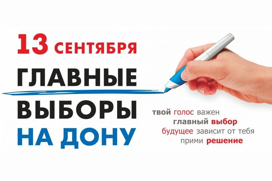 Прозрачность процедуры голосования на Дону обеспечат 2,5 тысячи общественных наблюдателей