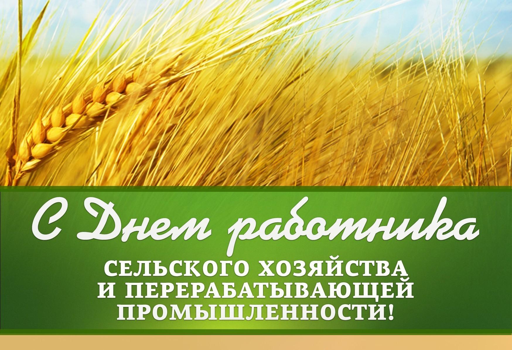 Поздравление главы Волгодонского района С.В. Бурлака с Днем работника сельского хозяйства