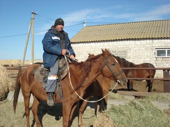 Экскурсия по ферме – словно путешествие в прошлое