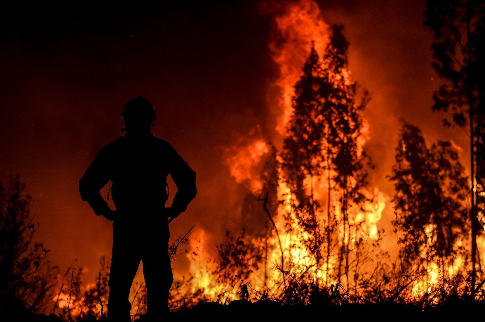 Сложная пожароопасная обстановка! Введён режим ограничения пребывания граждан в лесах!