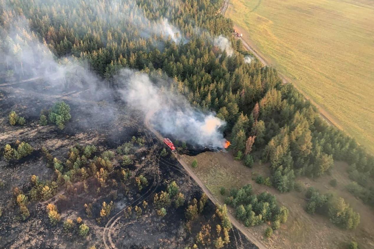 Лесной пожар в Цимлянском районе ликвидирован