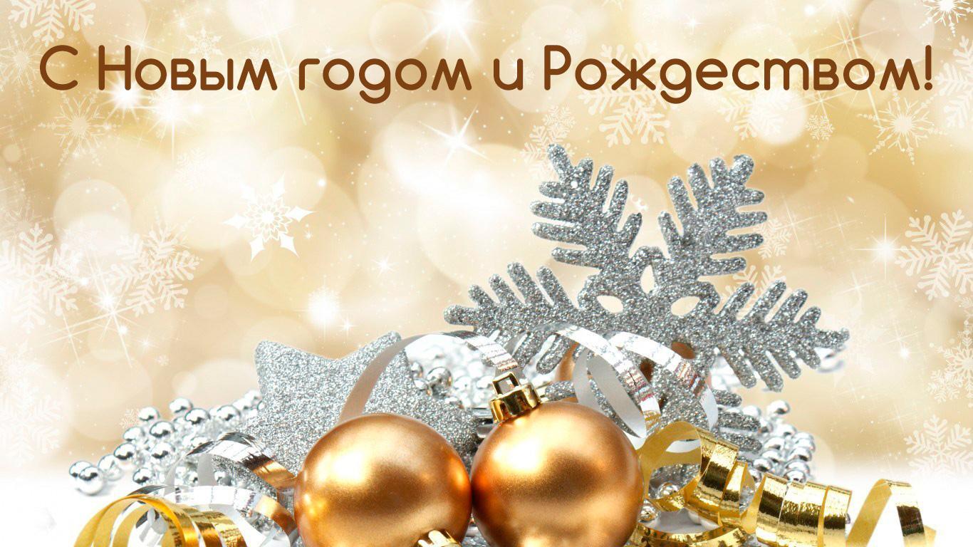 Главы сельских поселений поздравляют жителей Волгодонского района с Новым годом и Рождеством
