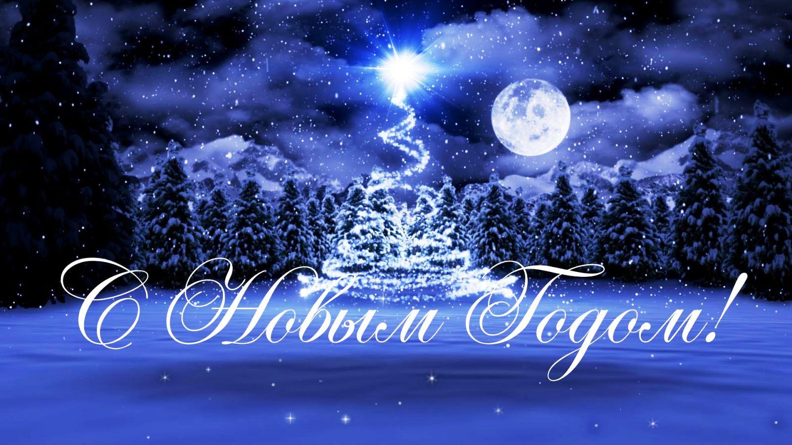 Поздравление главного редактора «Романовского вестника» с Новым годом и Рождеством
