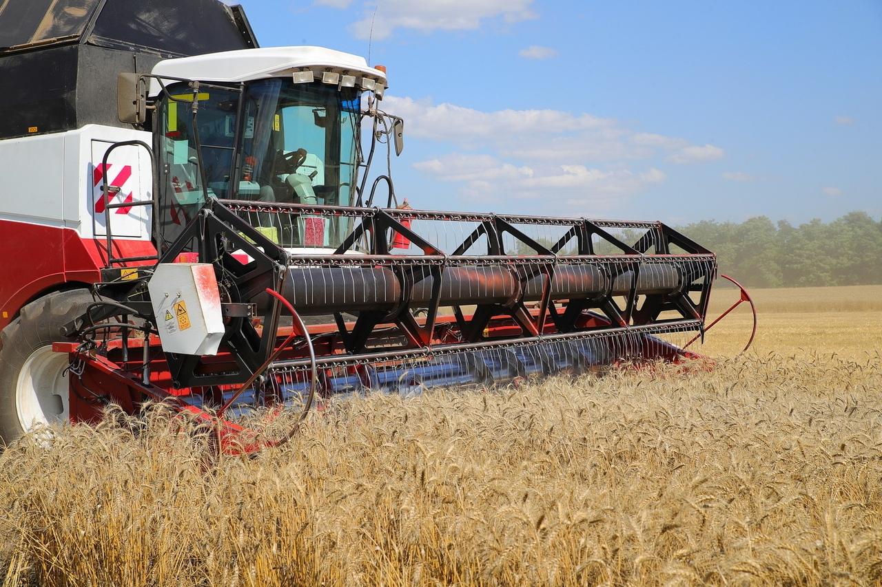 Донской регион занял первое место по сбору зерна в России
