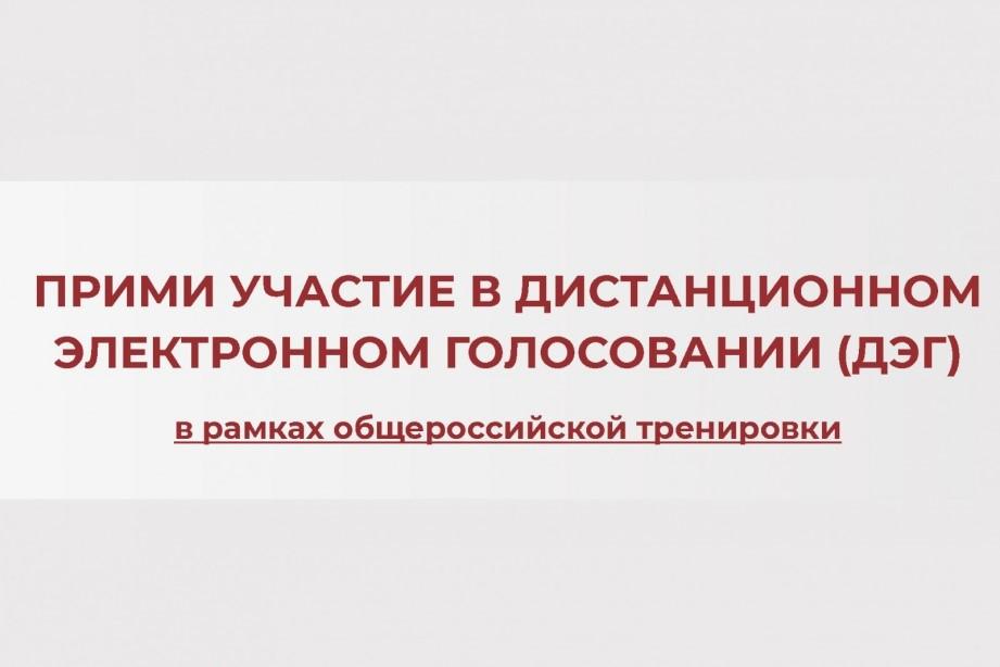 Дончан приглашают принять участие в дистанционном голосовании