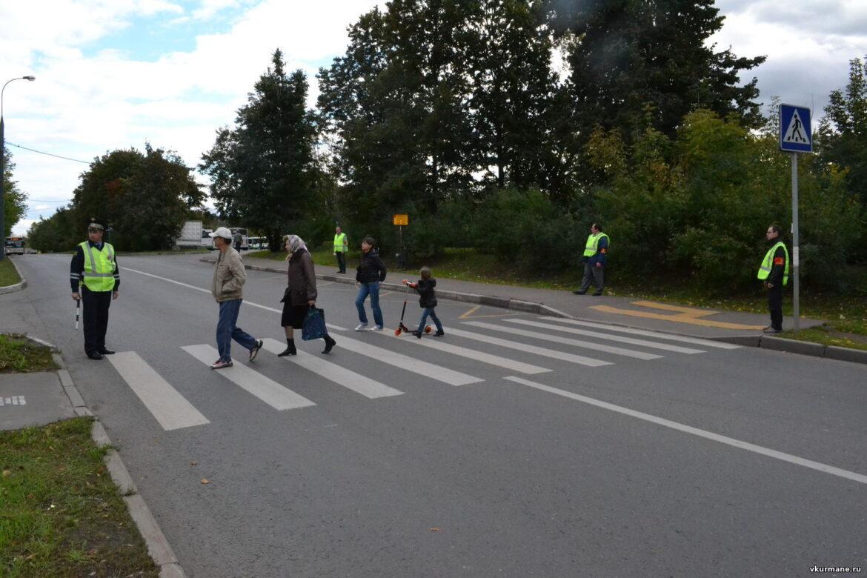 Профилактическое мероприятие «Пешеход» проходит в Волгодонском районе