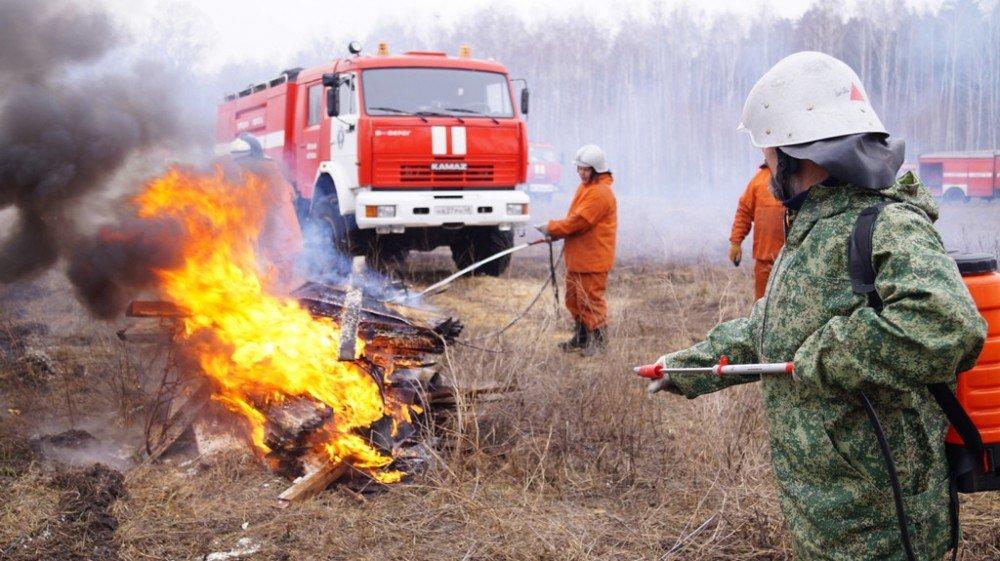 В лесном фонде Ростовской области установлен пожароопасный сезон