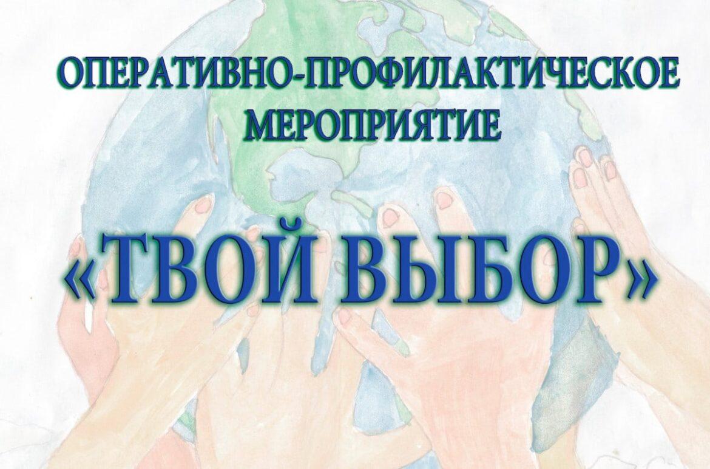 Оперативно-профилактическое мероприятие «Твой выбор» проходит в Волгодонском районе