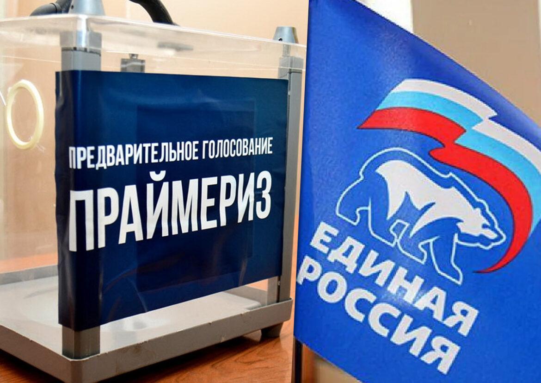 Более 100 тысяч жителей Дона проголосовали за три дня на электронном предварительном голосовании «Единой России»