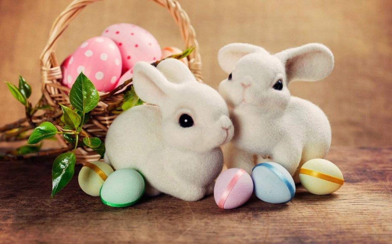 История возникновения пасхального зайца