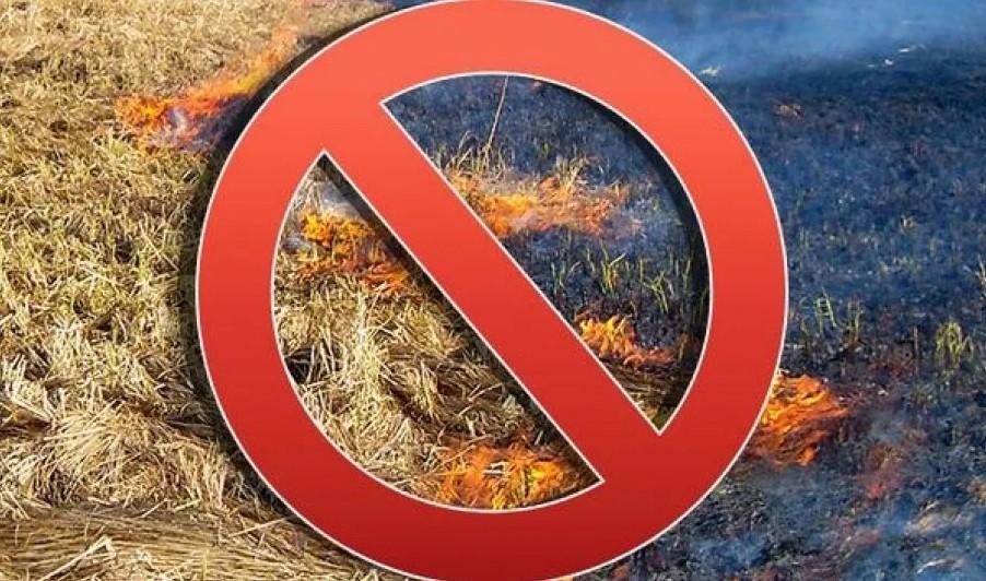 Ростовская межрайонная природоохранная прокуратура разъясняет о запрете выжигания сухой растительности