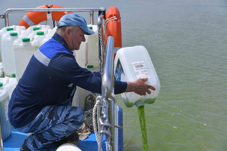 Ростовская АЭС провела экологическую реабилитацию реки Дон от размножения сине-зелёных водорослей