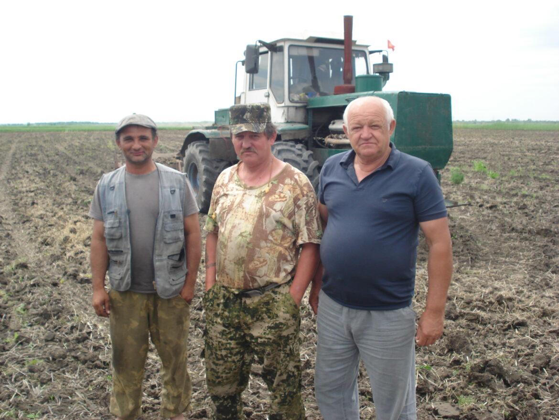 Дроны появятся над рисовыми чеками в Волгодонском районе