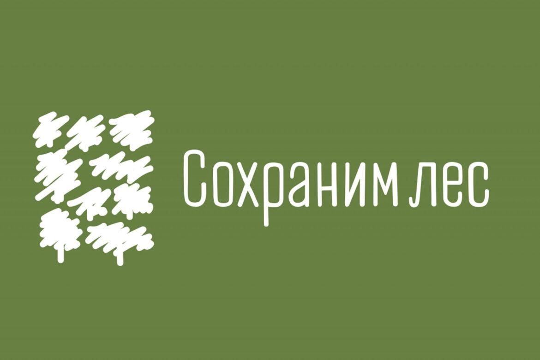 Всероссийская акция «Сохраним лес» стартует в августе