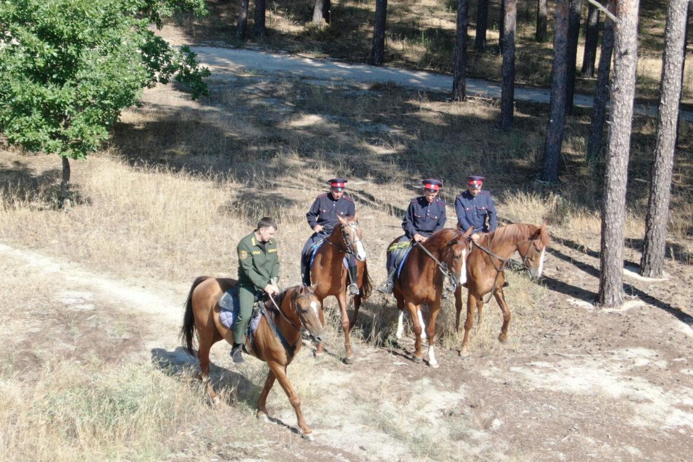 Казаки вместе с лесными инспекторами патрулируют леса в Ростовской области