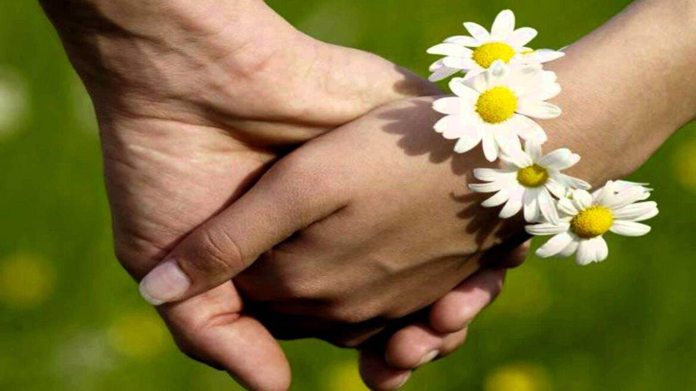 Ростовстат рассказал в цифрах о Дне семьи, любви и верности