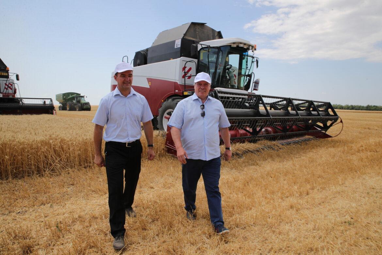 Василий Голубев: «На Дону собрано 3 млн тонн зерна»
