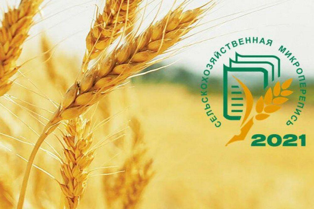 1 августа в Волгодонском районе стартует Сельскохозяйственная микроперепись-2021
