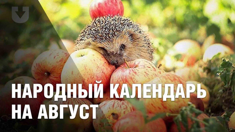 Народный календарь на август