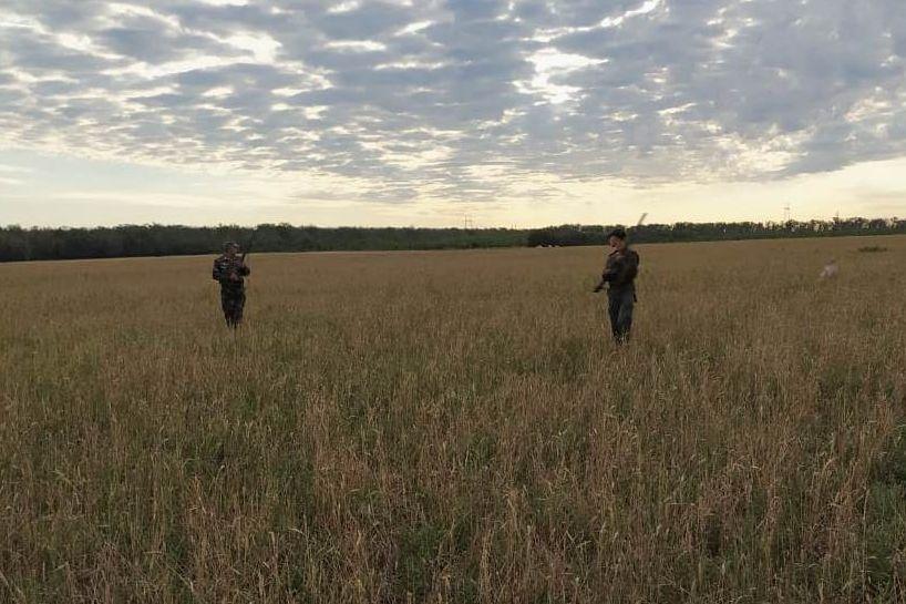 Утверждены лимиты на добычу животных в новом охотничьем сезоне