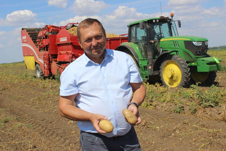 Полевой дневник: на Дону сбор урожая овощей перешагнул свой экватор