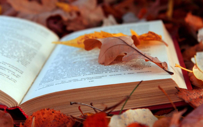 Ясыревский клуб проводит флэшмоб «Яркие краски осени»