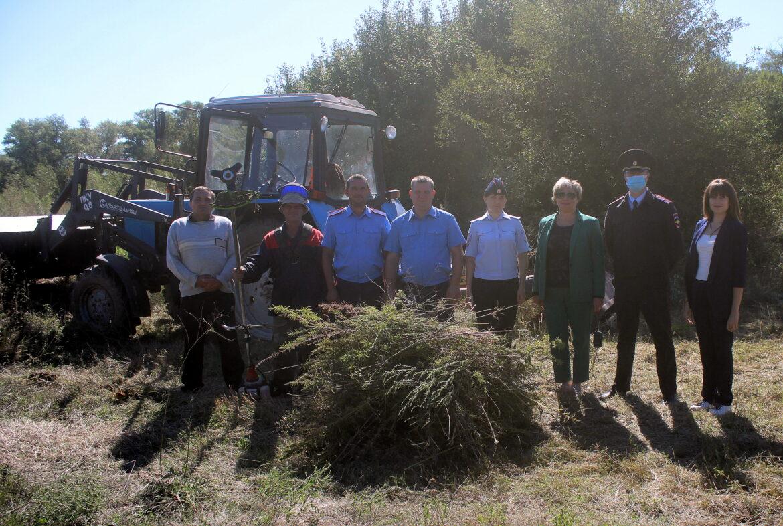 Четвертый этап областной антинаркотической акции «Единый день борьбы с дикорастущей коноплёй» завершился в Волгодонском районе