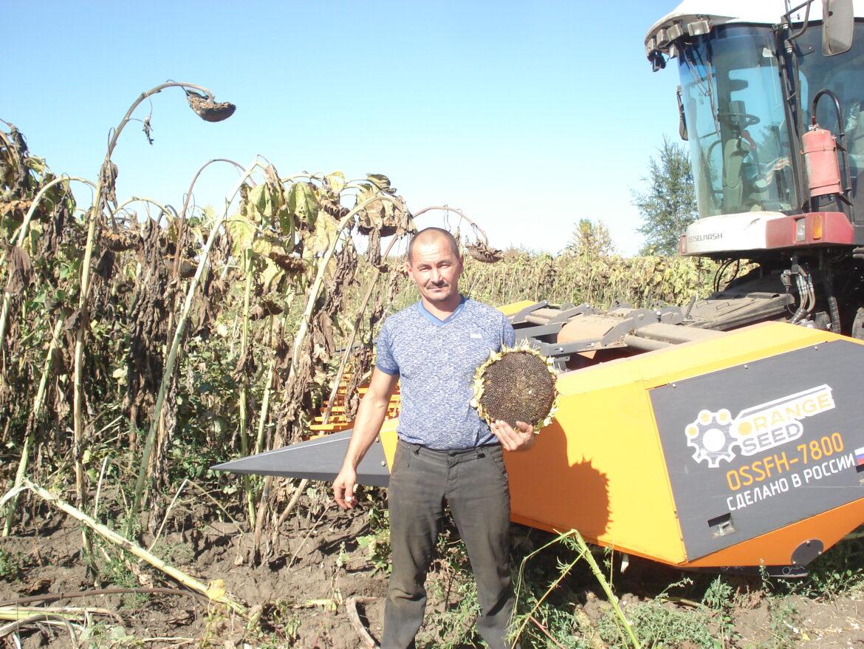 В ООО «Возрождение» Волгодонского района начали уборку подсолнуха