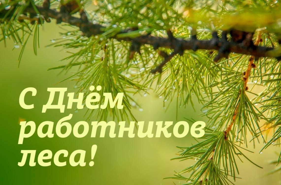 Работники лесного хозяйства Волгодонского района отметили свой профессиональный праздник