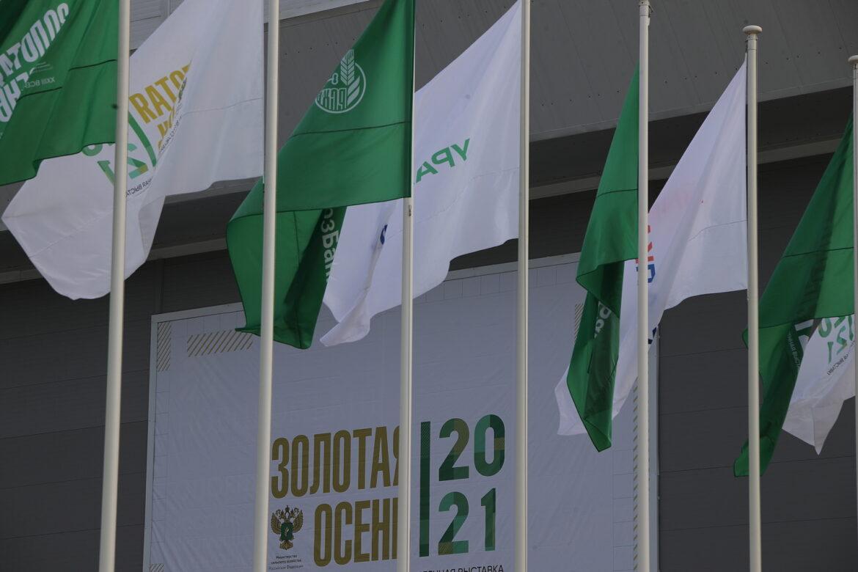 Губернатор Василий Голубев и глава Россельхозбанка Борис Листов обсудили ход реализации важных проектов в сфере донского АПК