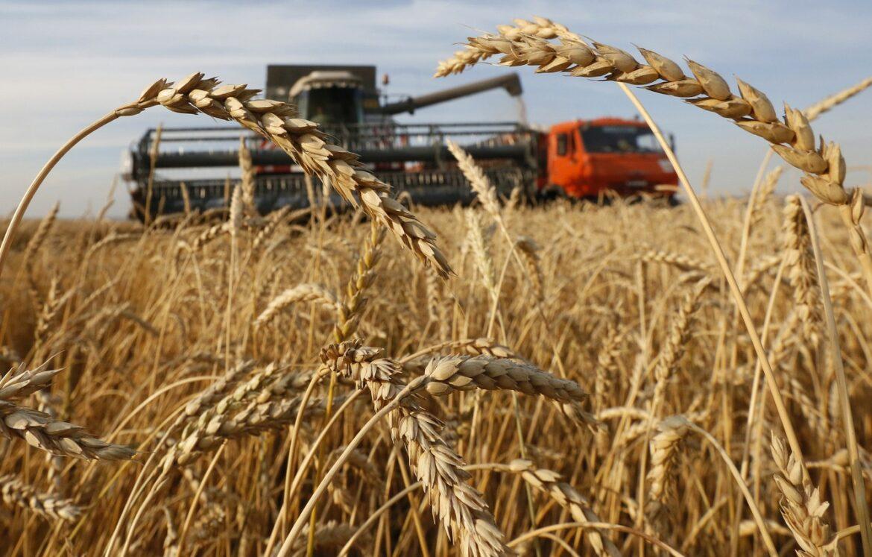 Сельских тружеников Волгодонского района отметили высокими наградами